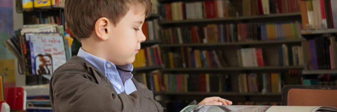 Dreng der læser i bog