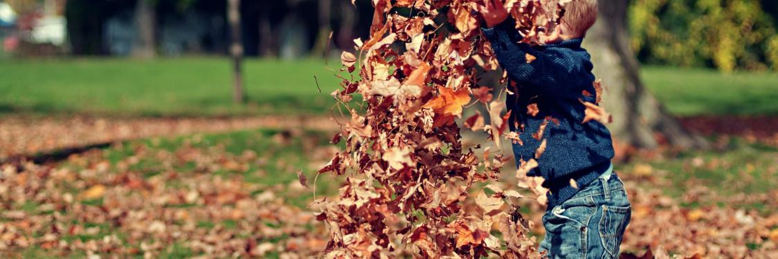 Barn der leger i efterårsblade